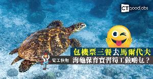 【筍工快報】保育團體請海龜保育實習生  包機票三餐
